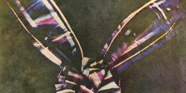 Тайна пестрой ленты: 160 лет назад была сделана первая цветная фотография