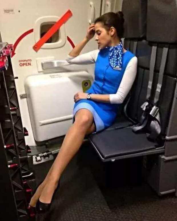 Ножки стюардесс. Подборка chert-poberi-styuardessy-chert-poberi-styuardessy-15320614122020-5 картинка chert-poberi-styuardessy-15320614122020-5