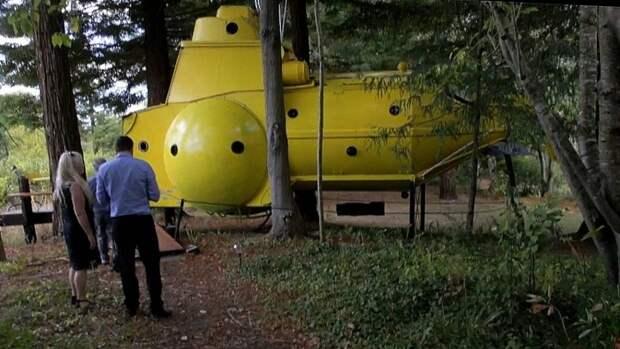 """""""Безумный ученый"""". Новозеландец построил подводную лодку в лесу"""
