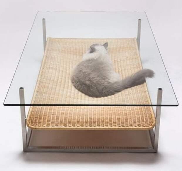 cathouse17 Дизайн для котов