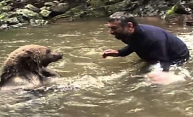 Медведица не могла добраться до медвежат в холодной воде: лесник не стал стоять на берегу и шагнул в реку
