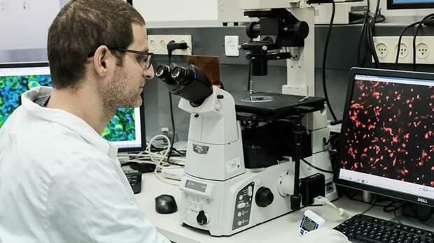Генетик рассказал о связи между коронавирусом и здоровьем кишечника