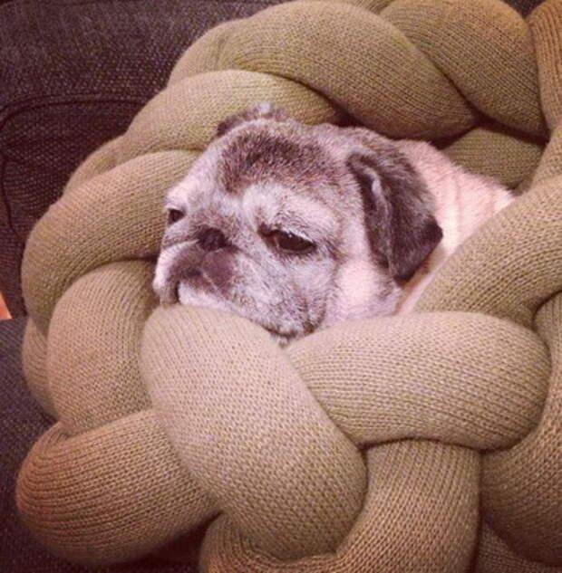 Узловые подушки