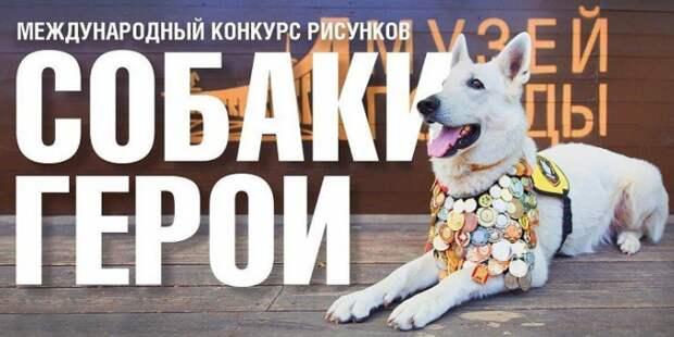 Собак-героев запечатлели на картинах ученики школы №1793