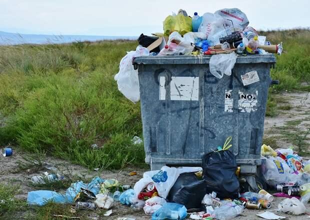 Чайка хочет освоить больше трех миллиардов на севастопольском мусоре
