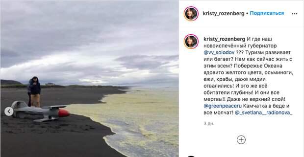 Экологическая катастрофа на Камчатке: что известно на данный момент. Взгляд из космоса