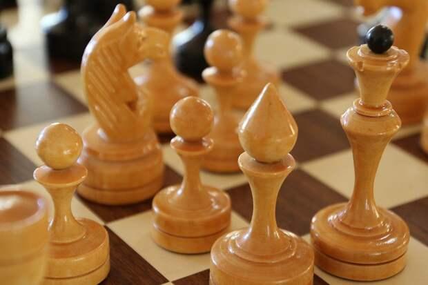 шахматы/pixabay