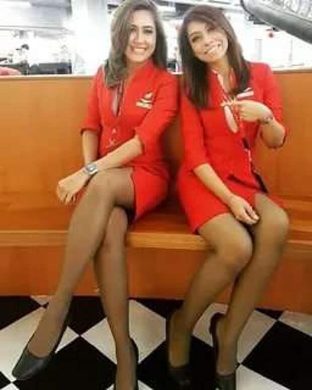 Ножки стюардесс. Подборка chert-poberi-styuardessy-chert-poberi-styuardessy-15320614122020-15 картинка chert-poberi-styuardessy-15320614122020-15