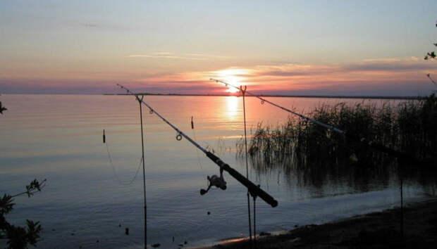 Ладога и Онего — в топе направлений для рыбалки в России