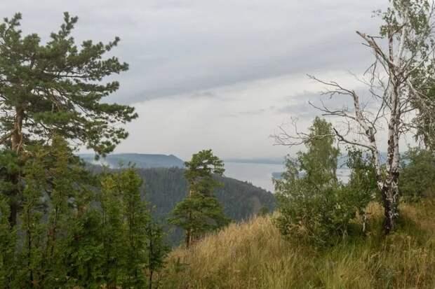 Жигулевские горы и Волга