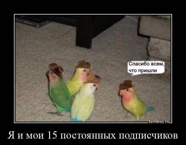 Прикольных демотиваторов сборник (15 фото)