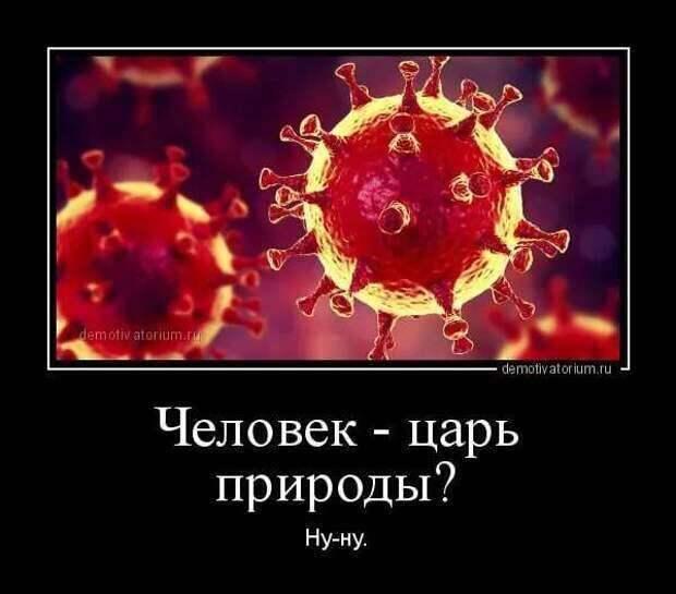 Демотиваторы про коронавирус с надписями. Подборка chert-poberi-dem-koronavirus-chert-poberi-dem-koronavirus-38220329102020-1 картинка chert-poberi-dem-koronavirus-38220329102020-1