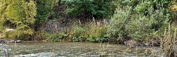 Алматинец сливал нечистоты в реку. Его оштрафовали