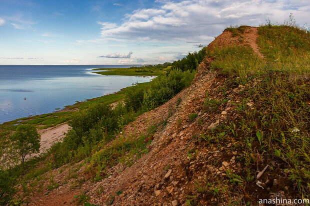 Ильменский глинт около деревни Пустошь