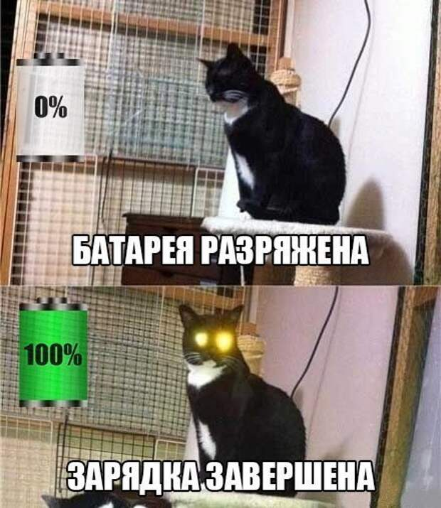 ka8f9xuBoPM