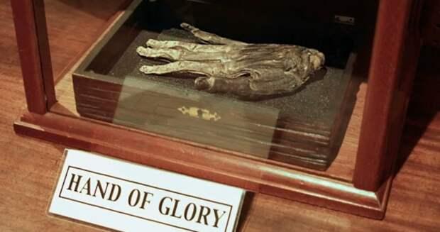 Рука славы — самый жуткий экспонат британского музеяУитби
