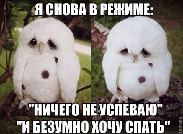 mDJEdnMWkA0