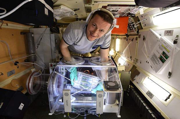 Россия не сократит научную программу на МКС до создания новой станции