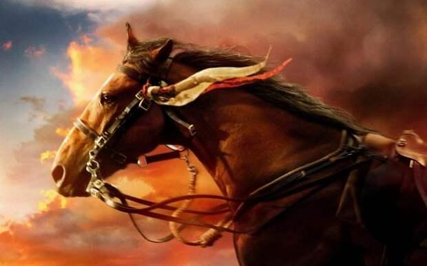 Боевой конь Читак