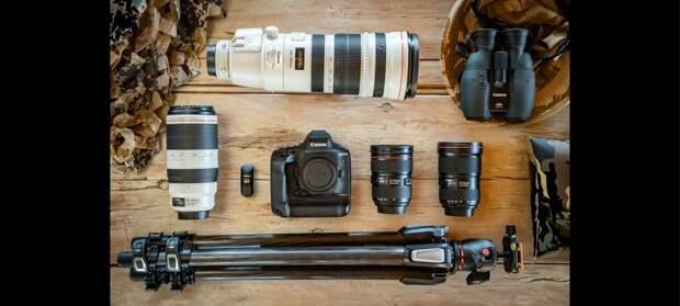 Оборудование Марины Кано: основное оборудование для съемки дикой природы