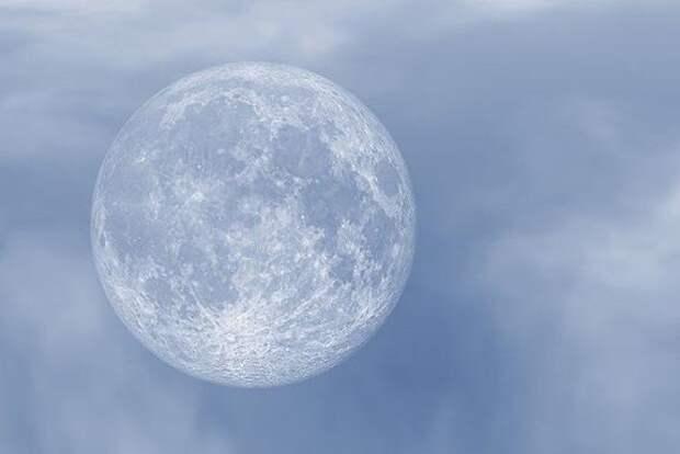 Астроном Сурдин допустил наличие микроорганизмов на Луне