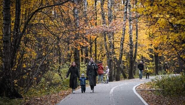 До 12 градусов тепла ожидается в Подольске в среду
