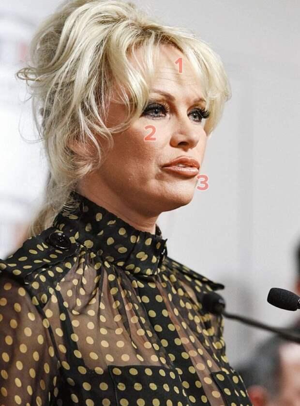 50-летняя грудастая красотка Памела Андерсон прибыла в Москву с новым лицом