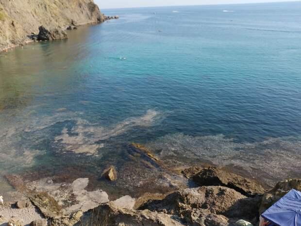 Море на Фиоленте покрылось нечистотами