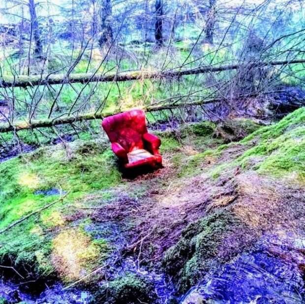 Нашёл это красное кресло посреди леса примерно в полутора часах езды от любого города