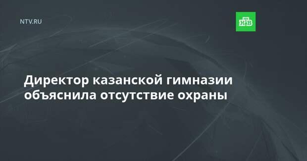 Директор казанской гимназии объяснила отсутствие охраны