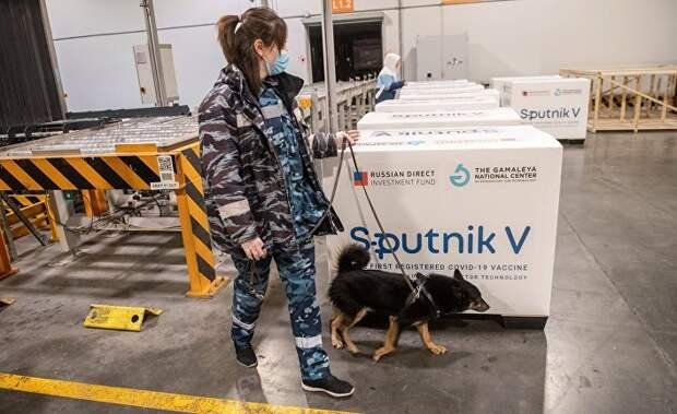 «Спутник V» завоевывает мир: Россия станет фармацевтическим гигантом