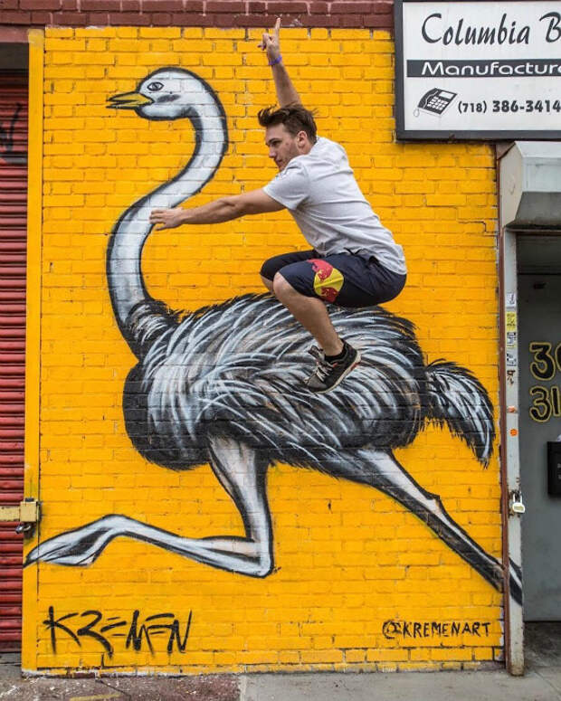 Оседлал нарисованного страуса.
