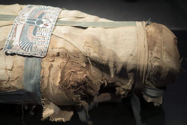 Учёные нашли необычный артефакт внутри египетской мумии