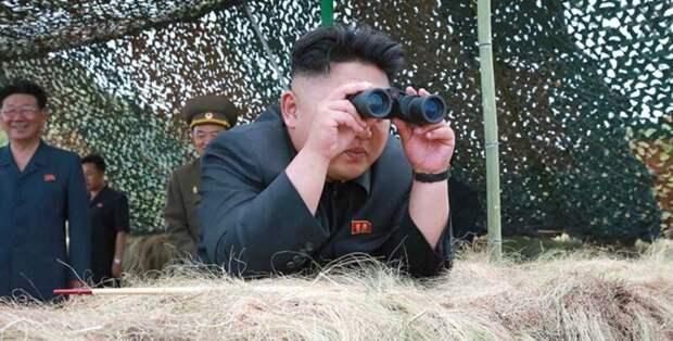 ВСеверной Корее запретили держать собак, асобаководов объявили вне закона