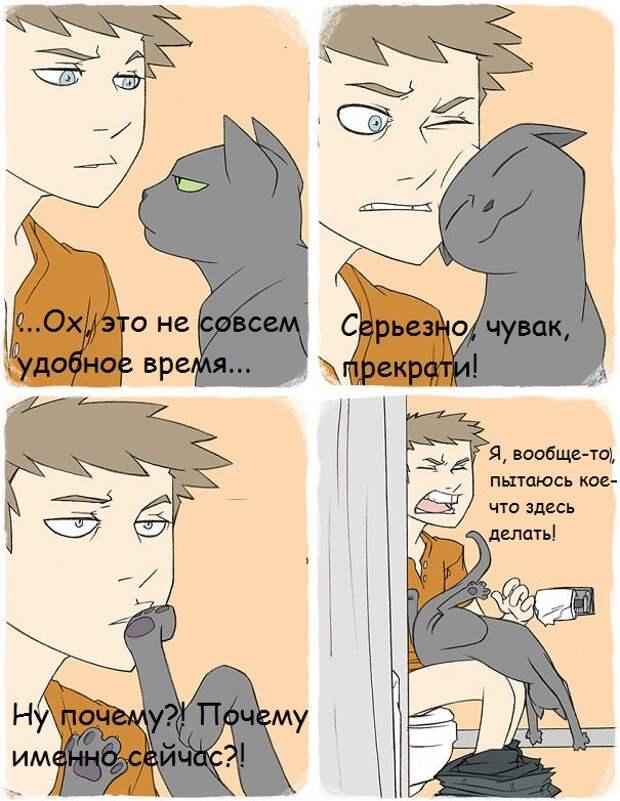 cat-logic-funny-69__605