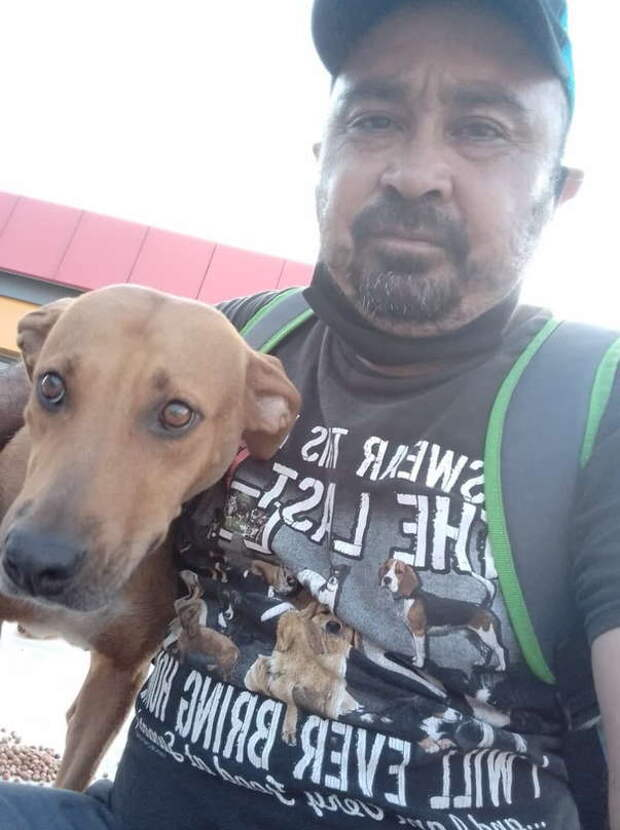 Ответил любовью на укус бродячей собаки. Блогер показал, как ласка изменила агрессивное животное