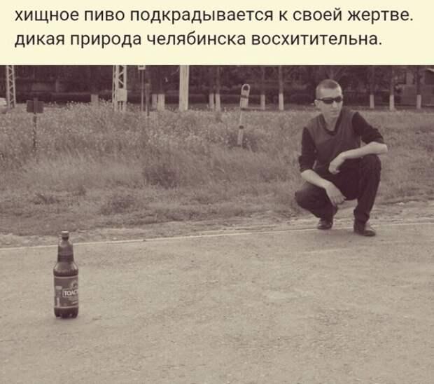 Шутки про алкоголь от пользователей социальных сетей, которые хорошо провели выходные