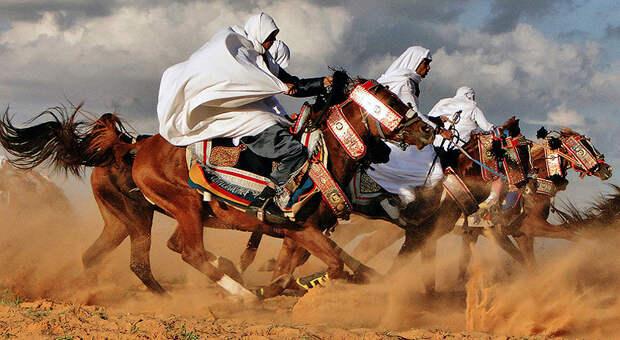 libyandn Ливийская пустыня Башара Шглила
