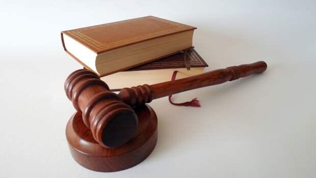 Юристы Пригожина: Соболь и Милов будут наказаны за клевету на бизнесмена