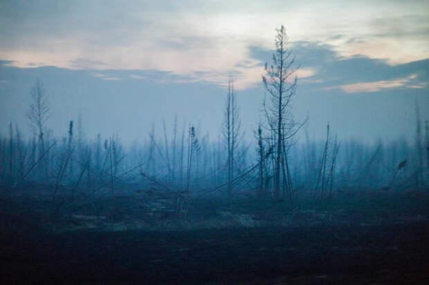 Лесной пожар в Форте Мак-Муррей