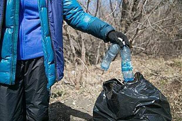 Пластик превращается в саженцы: как барнаульцы улучшают экологию города