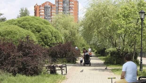Жители Мытищ могут проголосовать за необходимые изменения в Центральном парке