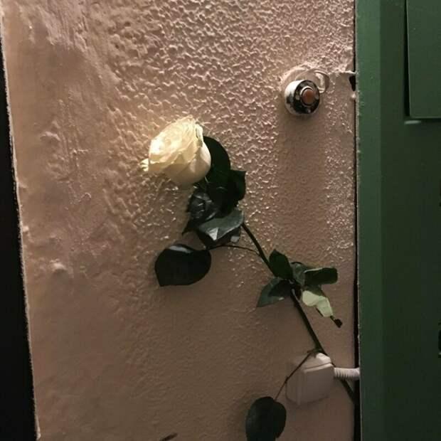Понравилась соседка любовь, мачо, прикол, романтика, романтки, соцсети, фото