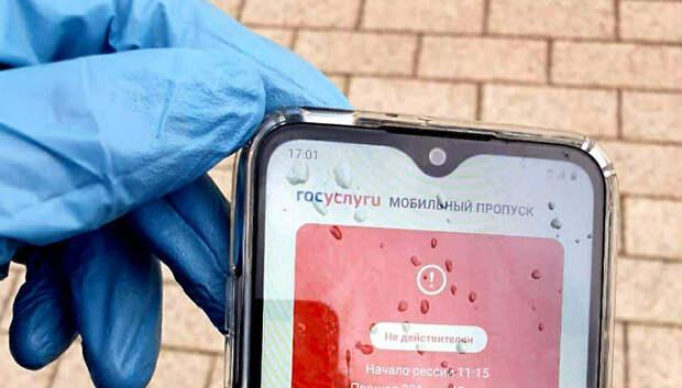 Наибольшее число юрлиц нарушили режим самоизоляции за день в Подольске