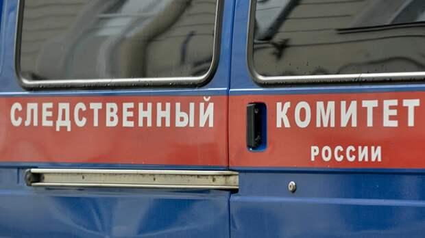 В Сети появилось видео задержания похитительницы ребенка в Подмосковье