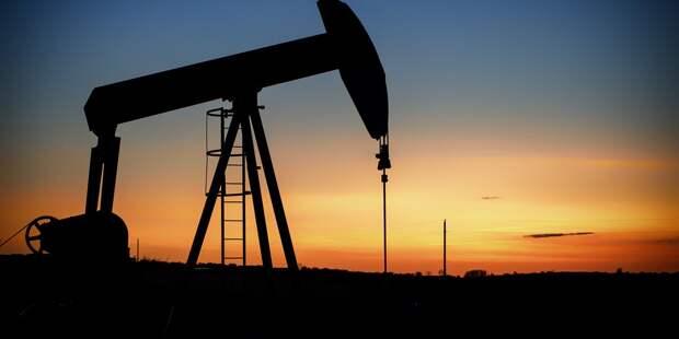 Путин дал нефти прогноз