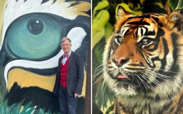 Ветеринар спас зрение тигрице, проведя уникальную операцию