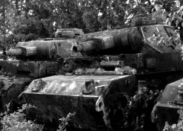 Немецкие танки заехали в лес на 5 минут и исчезли в нём навсегда