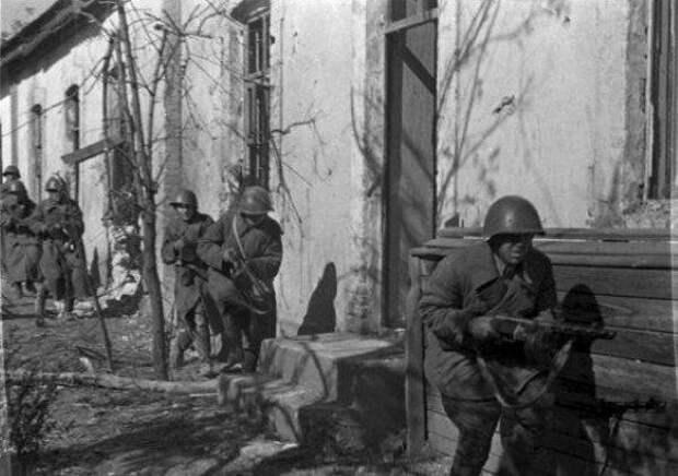 фото: общественное достояние Русские под Сталинградом