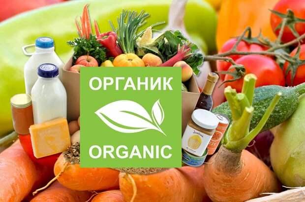 До Европы нам лет 500: как развивается органическое сельское хозяйство на Кубани